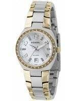 Fossil Colleague Two Tone Mother of Pearl Dial AM4183 Women's Watch