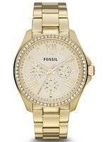 Fossil Cecile Crystals Multifunction Gold-Tone AM4482 Women's Watch