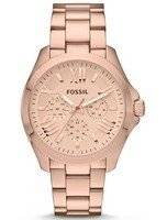 Fossil Cecile Multifunction Rose Gold-Tone AM4511 Women's Watch