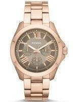 Fossil Cecile Multifunction Rose Gold-Tone Brown AM4533 Women's Watch