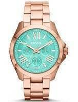 Fossil Cecile Multifunction Rose Gold-Tone AM4540 Women's Watch