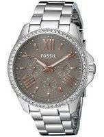 Fossil Cecile Multi-Function Crystallized AM4628 Women's Watch