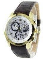 Citizen Perpetual Calendar Eco-Drive BL8002-08A/BL8003-05A Men's Watch