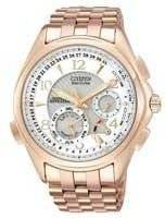 Citizen Minute Repeater Eco Drive Perpetual Calendar BL9003-85A