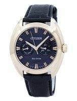 Citizen Paradex Eco-Drive BU4013-07H Men's Watch