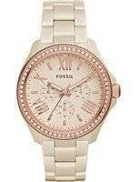 Fossil Cecile Multi-Function Crystallized Ceramic CE1092P Women's Watch