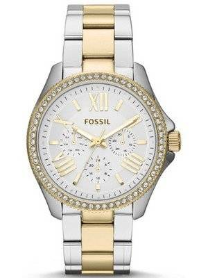 Fossil Cecile Multifunction Crystal Two Tone AM4543 Women's Watch