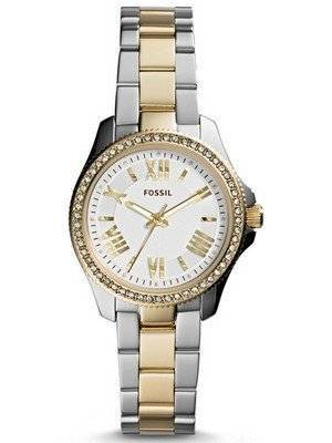 Fossil Cecile Crystal Two-Tone Stainless Steel AM4579 Women's Watch
