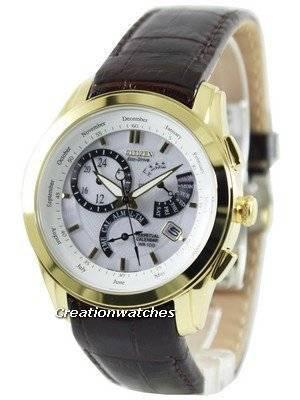 Citizen Perpetual Calendar Eco-Drive BL8002-08A/BL8003-05A Men's Watch