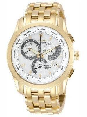 Citizen Eco Drive Perpetual Calendar BL8002-59A BL8002-59 Men's Watch