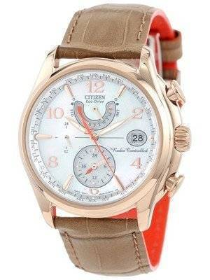 Citizen Eco-Drive World Time A-T Atomic FC0003-18D Women's Watch
