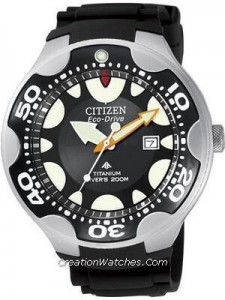 Citizen Diver Eco Drive Titanium BN0015-07E BN0015 Promaster Aqualand Watch