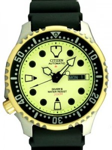 The Review of Citizen Promaster Automatic NY0046-02W NY0046 Diver Men's Watch