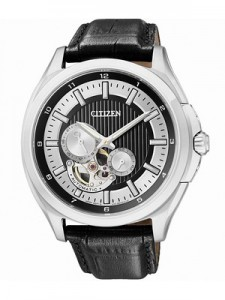 An Overview of Citizen Automatic NP1000-04E NP1000 Sapphire Mechanical Men's Watch