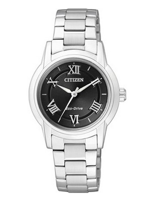 Citizen Eco-Drive FE2010-51E Womens Watch